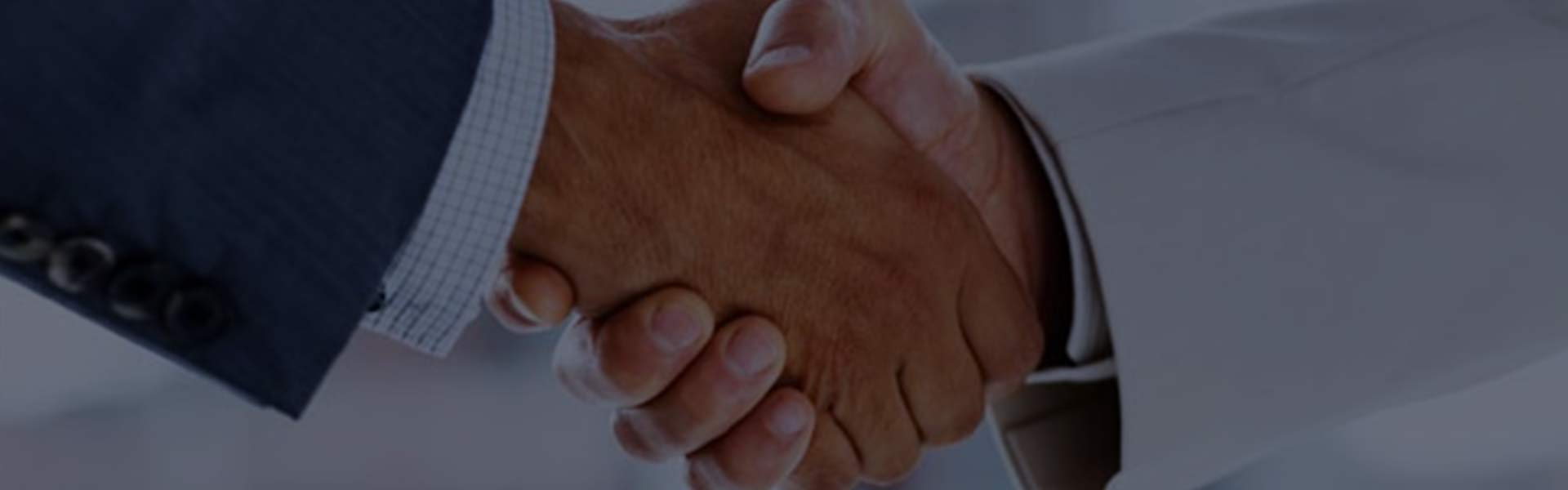 Strategic Partnering Consulting Service